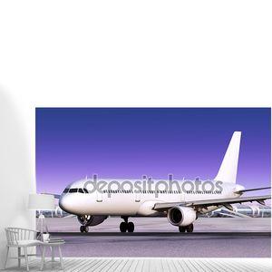Приземлился пассажирский самолет