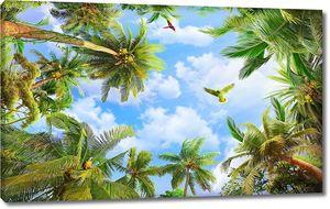 Вид снизу в тропическом лесу