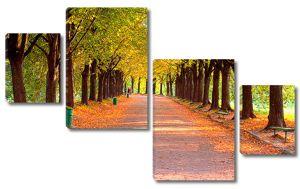 Опавшие листья на аллее