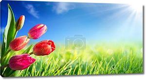 Весна и Пасхи фон с тюльпанами в солнечный луг