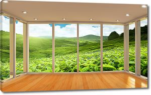 Чайные плантации из окна