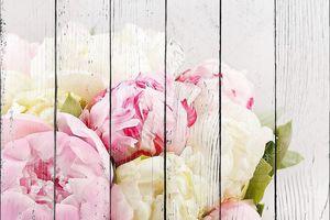 Букет из белых и розовых пионов