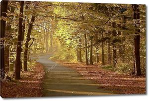 Осенняя аллея в сумерках