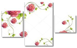 Красивые большие розовые розы на  ветке