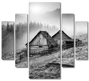 Карпатская горная деревня. Черный и белый
