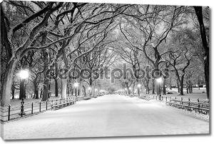 Центральный парк, Нью-Йорк, покрытые снегом на рассвете