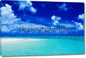 Пляж с голубым небом и живой океан цветов