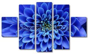 Подробная информация о голубой цветок для фона или текстуры