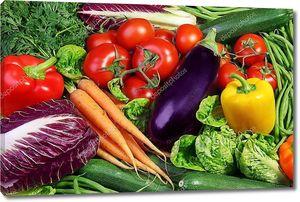 Ассорти из свежих овощей на столе