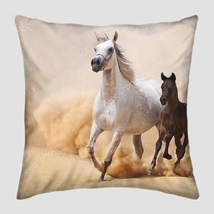 Arabian Mare и жеребенок, галопом в пустыне