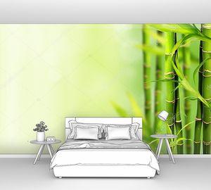 Бамбуковые ростки справа