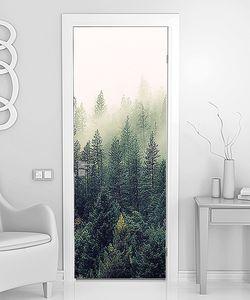 Лесной туман на склоне