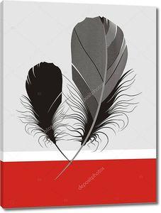 Два больших черных пера на сером и красном фоне