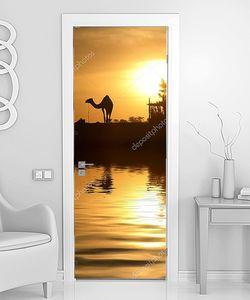 Верблюд на фоне закатного солнца