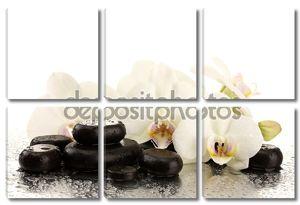 Спа камни и цветы орхидеи