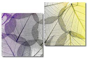Цветные прозрачные листья