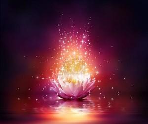 волшебный цветок на воде