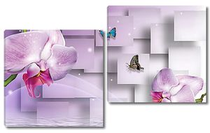 Орхидеи с кубами