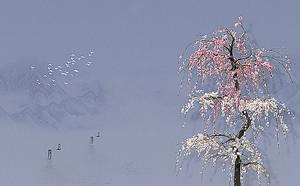 Цветущее дерево на сером фоне