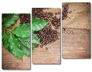 свежий кофе в зернах на фоне дерева