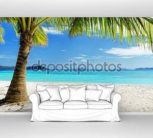 Зеленое дерево на белом песчаном пляже