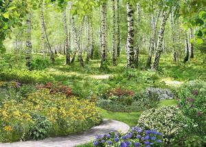 Березовый лес в цвету
