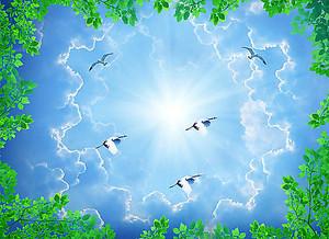 Высокое небо с птицами