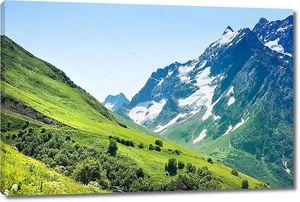 Вершины гор, Домбай, Россия