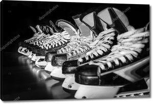 Пары хоккейных коньков