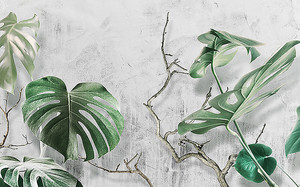 Пальмовые листья на фоне стены