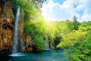 Водопады в глубоком лесу