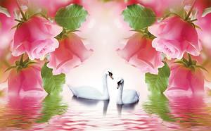 Розы над лебедями