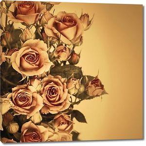 Розовые цветы в желтом фильтре