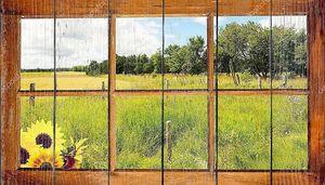 Поле и лес вид через окно.