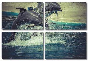 Дельфин прыжок из воды