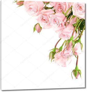 Мелкие розы в верхнем углу