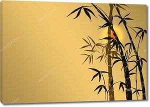 Бамбуковые побеги на закате