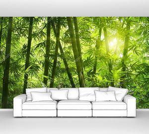 Азиатский бамбуковый лес  утром