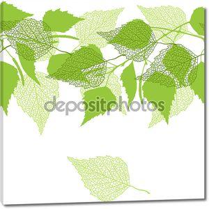 Бесшовный фон с зелеными березы листья.