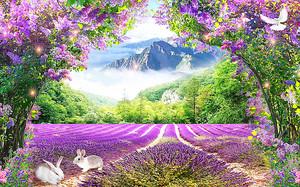 Сиреневый рай