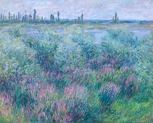 Моне Клод. Берега Сены в Ветей, 1881
