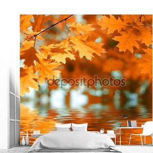 Осенние листья над водой
