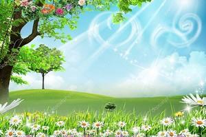 Пейзаж , ромашки, цветущие деревья, зеленый луг, небо