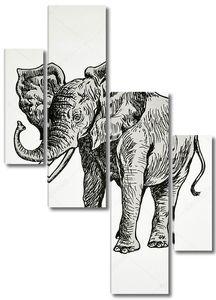 Портрет африканского слона