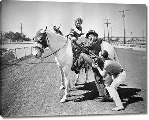 Попытка сесть на коня