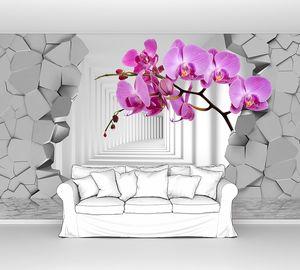 Орхидеи на фоне пролома