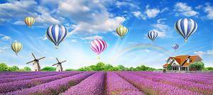 Поле лаванды с воздушными шарами