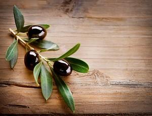 Веточка с черными оливками