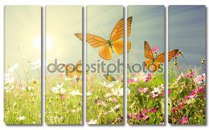 Летние цветы с бабочками