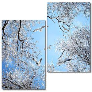 Чайки над зимним лесом